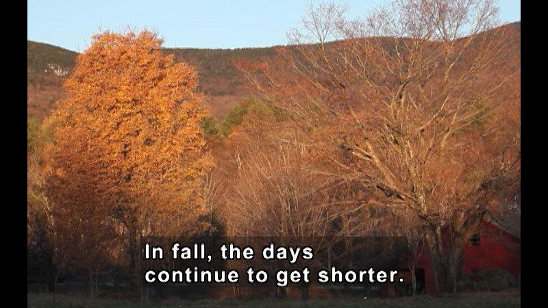 Still image from Fall