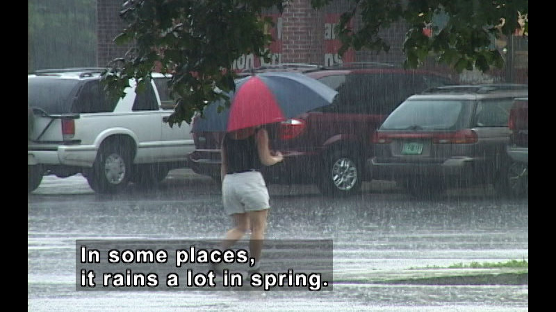 Person walking in the rain holding an umbrella, wearing shorts and a sleeveless shirt. Caption: In some places, it rains a lot in spring.