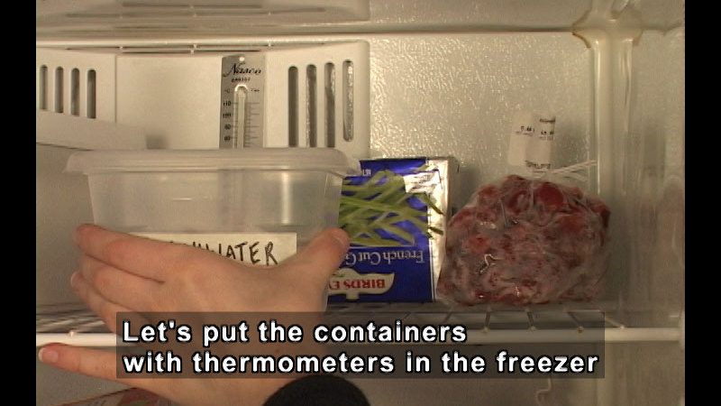 Person placing a clear plastic container with a thermometer in the freezer. Caption: Let's put the containers with thermometers in the freezer.
