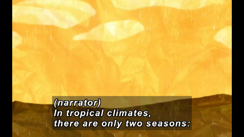 Illustration of a barren landscape with rain falling. Caption (narrator) In tropical climates, there are only two seasons: