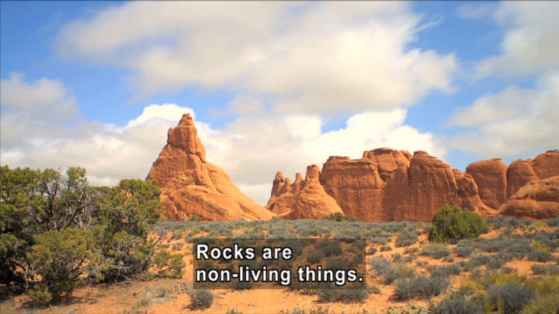 Formations of red rock in desert scrub brush. Caption: Rocks are non-living things.