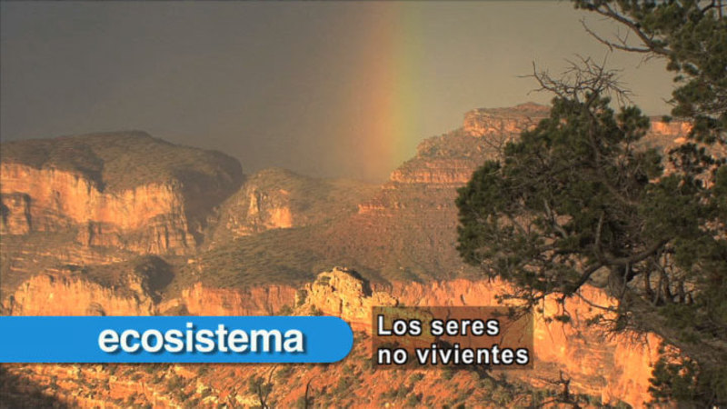 Still image from Science Video Vocab: Non-Living (Spanish)