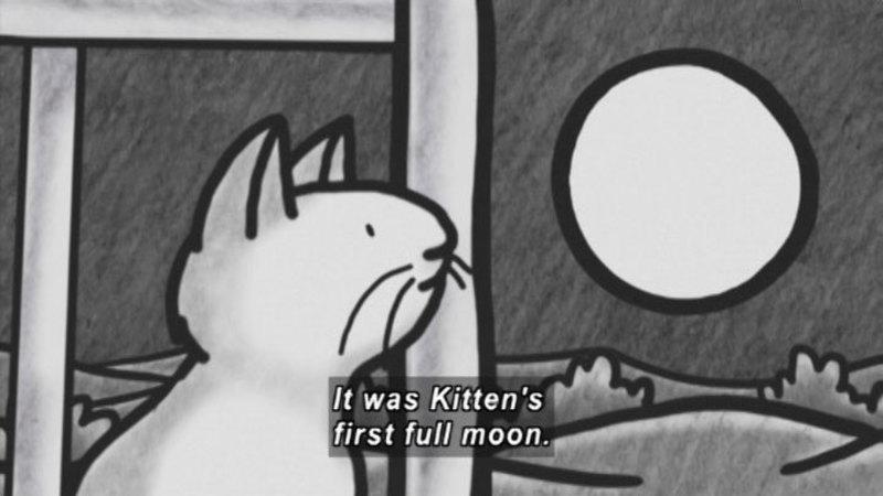 Still image from: Kitten's First Full Moon