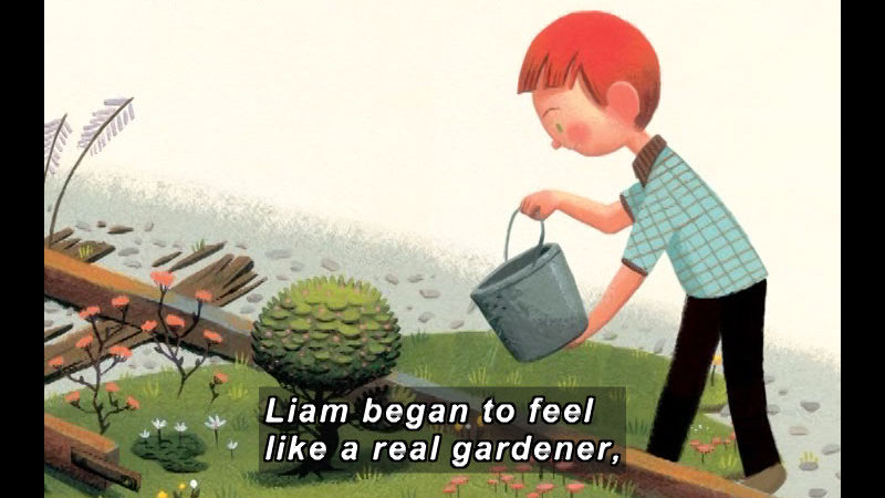 Illustration of a boy pouring a bucket of water onto a small tree. Caption: Liam began to feel like a real gardener,