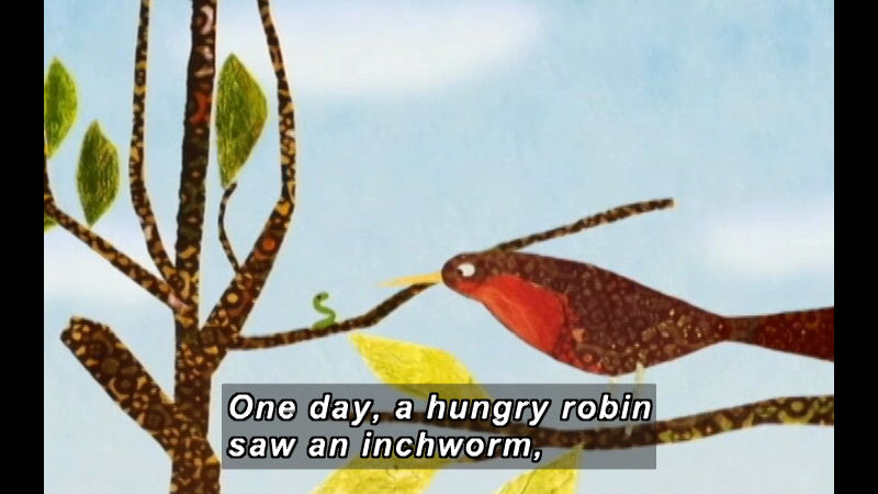 Illustration of a bird on a branch looking at a small worm on a branch close by. Caption: One day, a hungry robin saw an inchworm,
