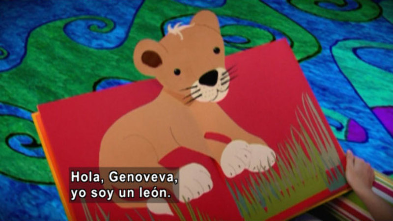 Still image from Animapaka: Lion (Spanish)