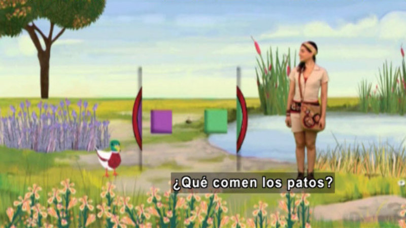 Still image from Animapaka: Duck (Spanish)