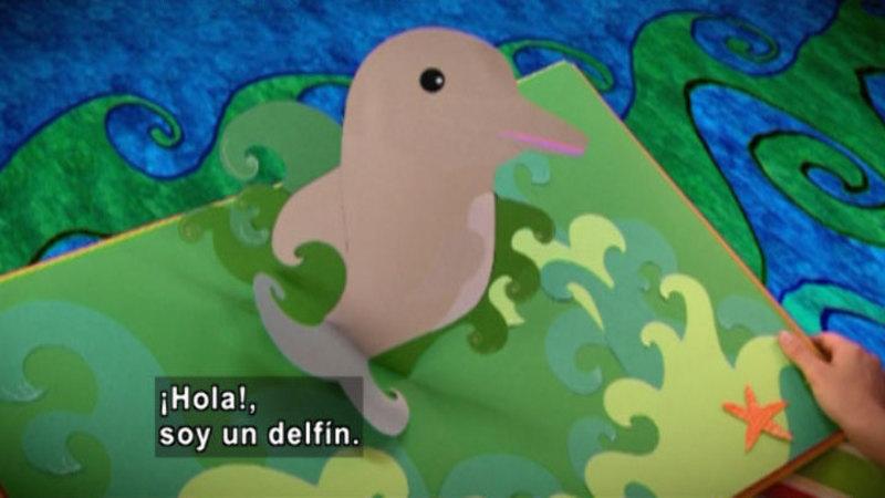 Still image from Animapaka: Dolphin (Spanish)
