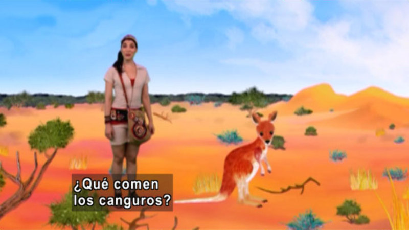 Still image from Animapaka: Kangaroo (Spanish)