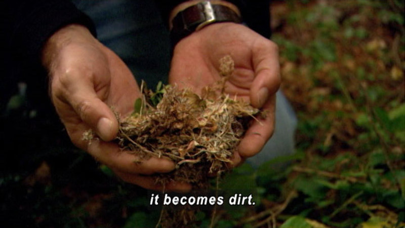 Hands cupping plant detritus from the ground. Caption: it becomes dirt.