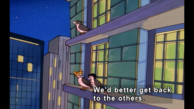 Cartoon characters with faces and the bodies of pigeons sitting on the window ledge of a high-rise building. Caption: We'd better get back to the others.