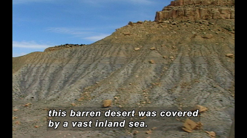 Rocky hillside with a few small plants. Caption: this barren desert was covered by a vast inland sea.