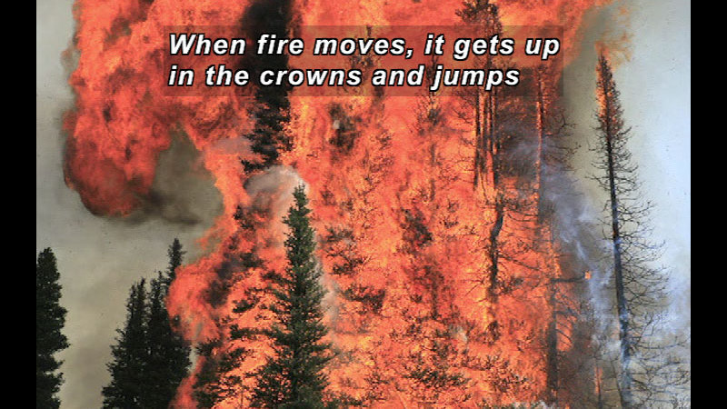 Still image from: Wild Chronicles: Wildfire Firefighters
