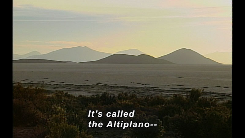 Still image from Wild Chronicles: The Altiplano in South America