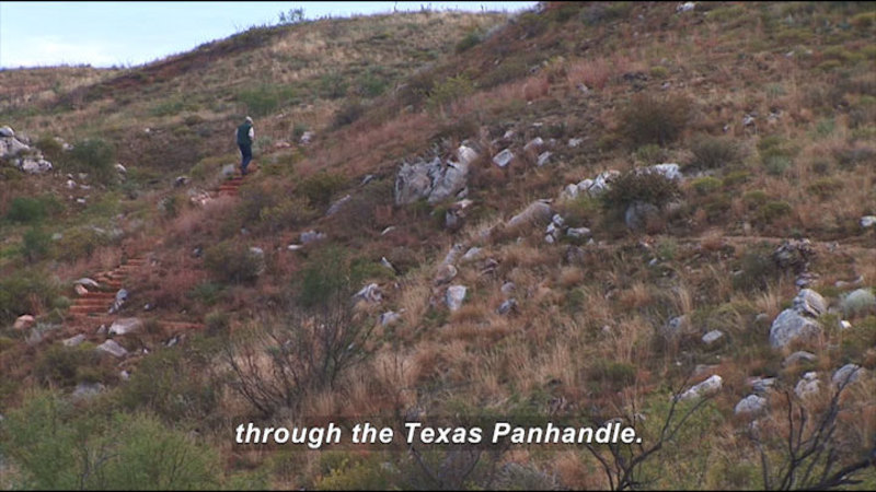 Person walking through low hills of green and brown shrubs and rock strewn in red soil. Caption: through the Texas Panhandle.