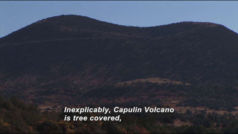 Rolling two-peaked hill and valley covered in trees. Caption: Inexplicably, Capulin Volcano is tree covered,