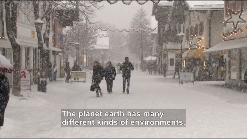People walking down a snowy street. Caption: The planet earth has many different kinds of environments.