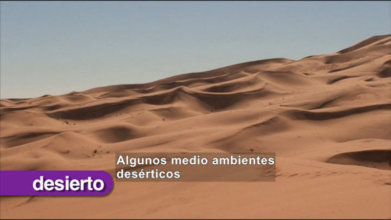 Still image from Science Video Vocab: Environment (Spanish)