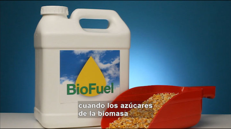 Still image from Science Video Vocab: Biomass Energy (Spanish)