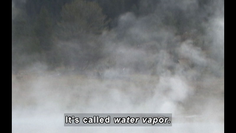 Mist in the air. Caption: It's called water vapor.