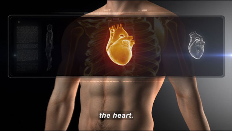 Illustration of human torso with area over the upper chest in x-ray vision, showing the rib cage and heart. Caption: the heart.