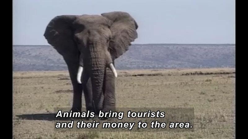 Still image from: Africa's Child: Kenya