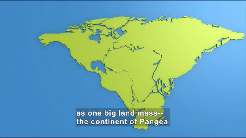 All the continents pushed together. Caption: as one big land mass--the continent of Pangea.