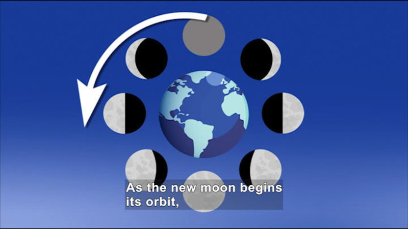 Diagram of the moon orbiting Earth. Caption: As the new moon begins its orbit,