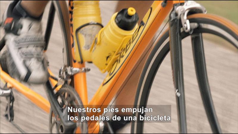 Still image from Science Video Vocab: Push (Spanish)