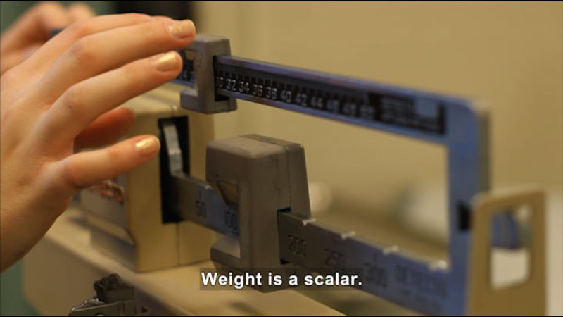 A sliding scale weighing something. Caption: Weight is a scalar.