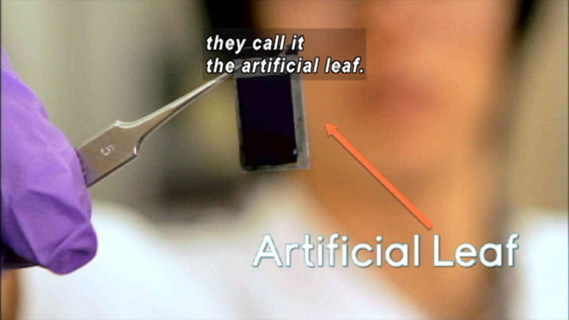 Gloved hand holding an electronic chip with a pair of tweezers. Caption: they call it an artificial leaf.