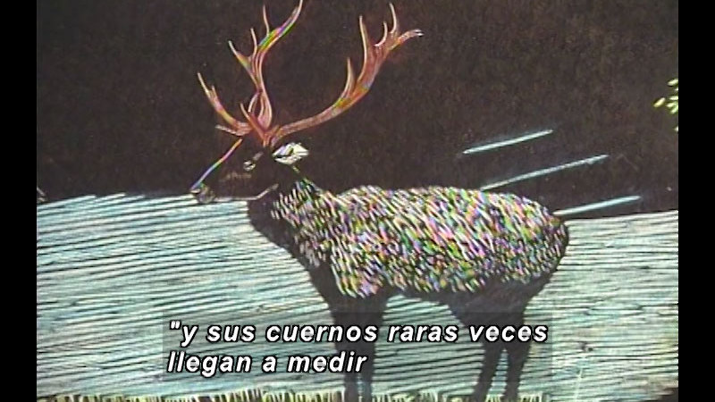 Still image from Kool Books: Teeth And Horns (Spanish)