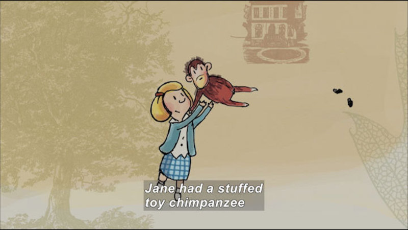 Illustration of a young girl tossing a chimpanzee into the air. Caption: Jane had a stuffed toy chimpanzee