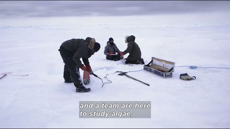 Three researchers in parkas with equipment on a sheet of ice. Caption: and a team are here to study algae,