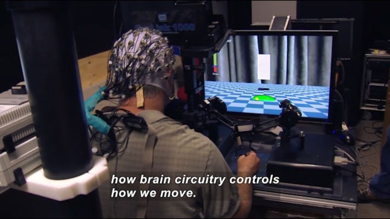 Person wearing a cap covered in wires while manipulating controls which guide something on the computer screen in front of them. Caption: how brain circuitry controls how we move.