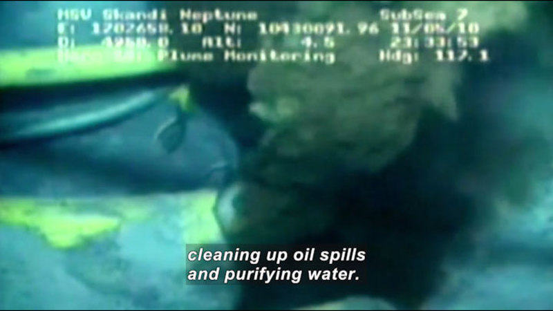 Underwater view of billowing plume of pollutant. Caption: cleaning up oil spills and purifying water.