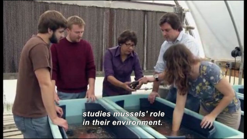 Still image from Science Nation: Threats to Freshwater Mussels and the Consequences for Ecosystems