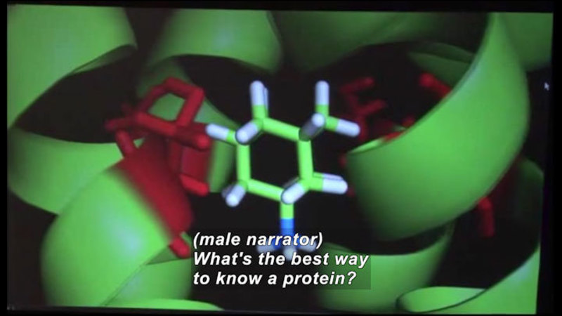 Computer model of spiral ribbon structures with hollow, hexagonal tubular structures. Caption: (male narrator) What's the best was to know a protein?