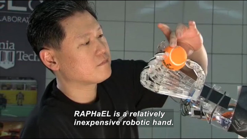 Person placing a tennis ball between the finger and thumb of a robotic hand. Caption: RAPHaEL is a relatively inexpensive robotic hand.