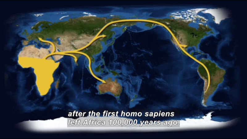 Still image from Science Nation: Lice and Human Migration