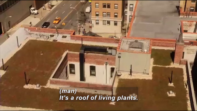 Aerial view of a building with plants covering most of the surface area of the roof. Caption: (man) It's a roof of living plants.