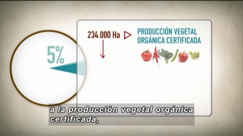 Still image from Invisible Science And Technology Surrounding: Organic Farm (Spanish)