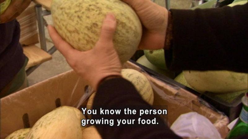 Still image from Farmers Markets