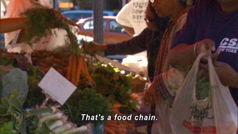 People at a produce stall in an open-air market. Caption: That's a food chain.