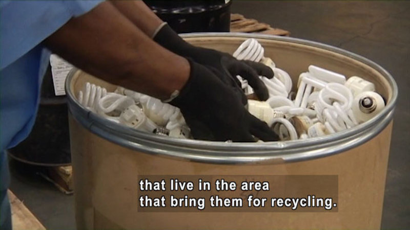 Gloved hands reaching into a large cardboard drum full of lightbulbs. Caption: that live in the area that bring them for recycling.