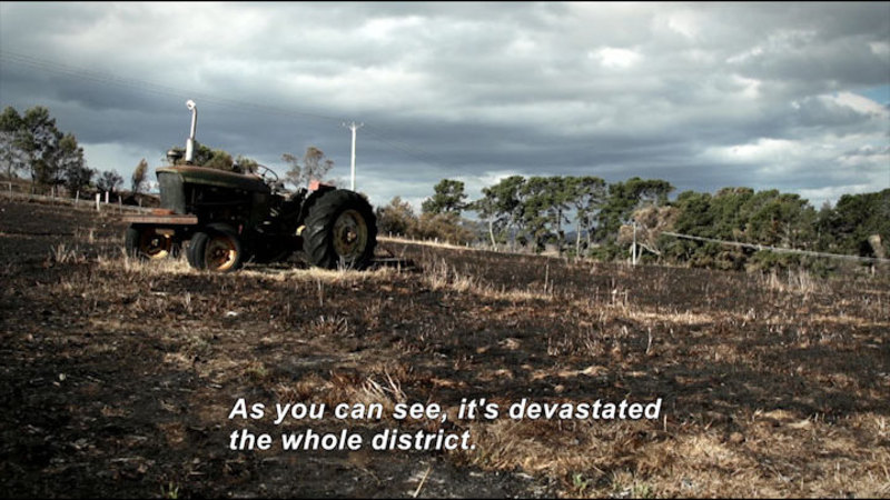 A field of burned grass with a tractor in the middle of it. Caption: As you can see, it's devastated the whole district.