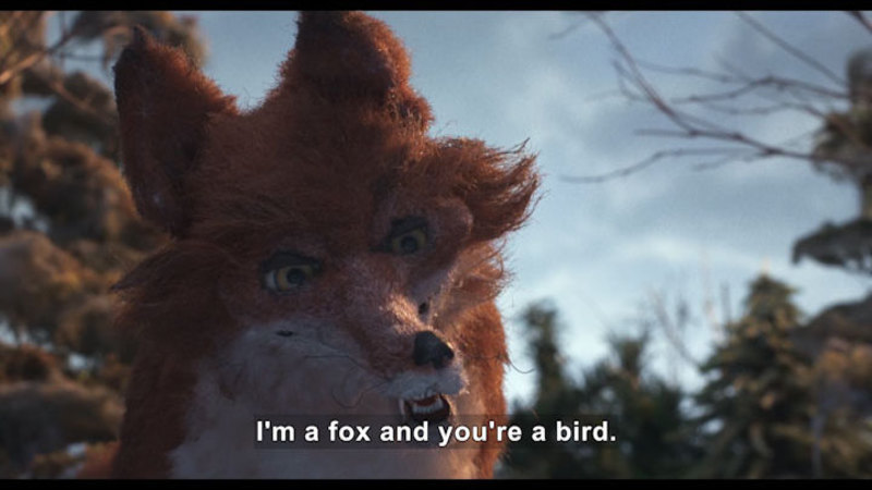 Still image from: The Fox And The Chickadee