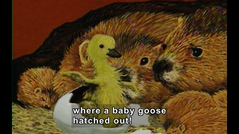 Still image from: Goose
