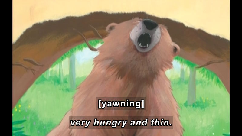 Still image from: Bear Wants More