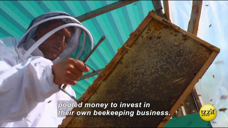 Still image from: Bee The Change